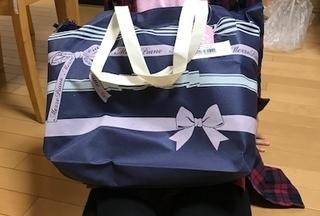 メゾピアノ福袋バッグ.jpg